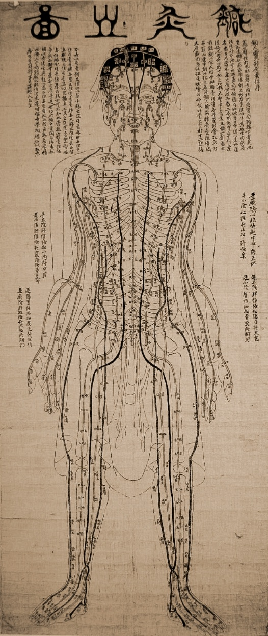 Diagram of acupuncture points on human body